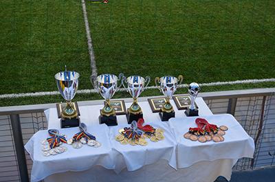 Campionatele Regionale - informatii generale