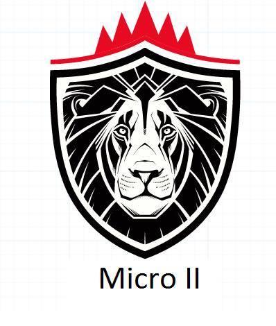 MICRO 2
