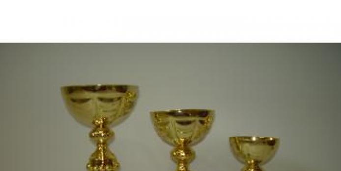 PIATRA NEAMT: FINALA CUPEI ROMANIEI ADRIDAN