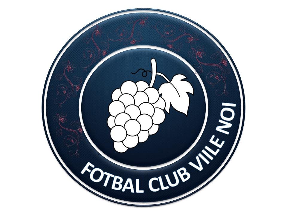 Fotbal Club Viile Noi