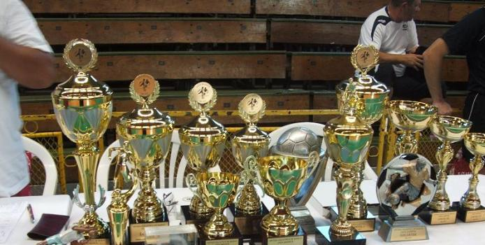 IASI: CUPA SUMMER HIT 2013 - Fenix Piatra Neamt a castigat trofeul