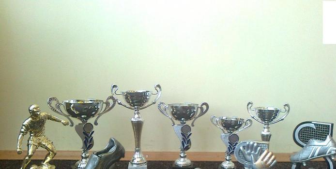 PIATRA NEAMT: ROMANEL FENIX CAMPIOANA CUPEI ROMANIEI ADRIDAN